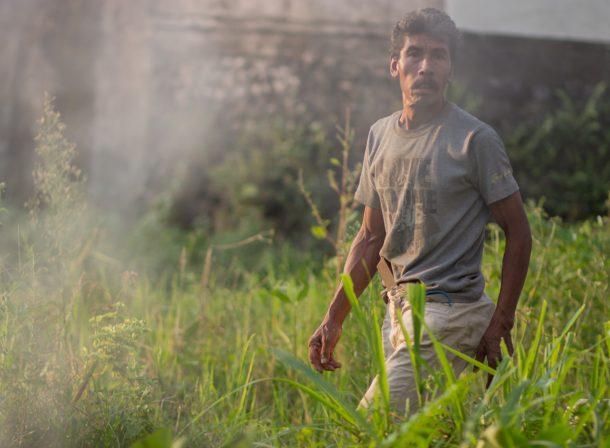 Street photography. Man farming at dawn in Bali, Indonesia.