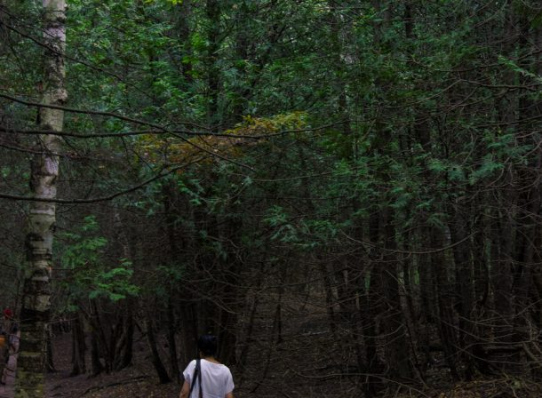 Girl walking into a forest in Elora, Ontario.