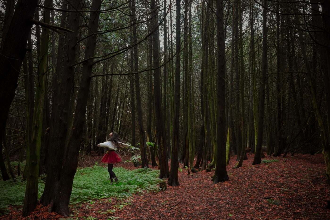Girl in red skirt spinning amongst tall trees in a forest covered with red mulch.